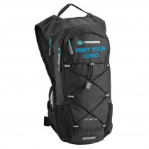 Skycrane 2L Backpack